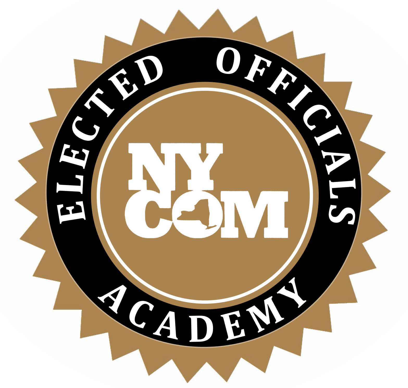 Elected Officials Academy