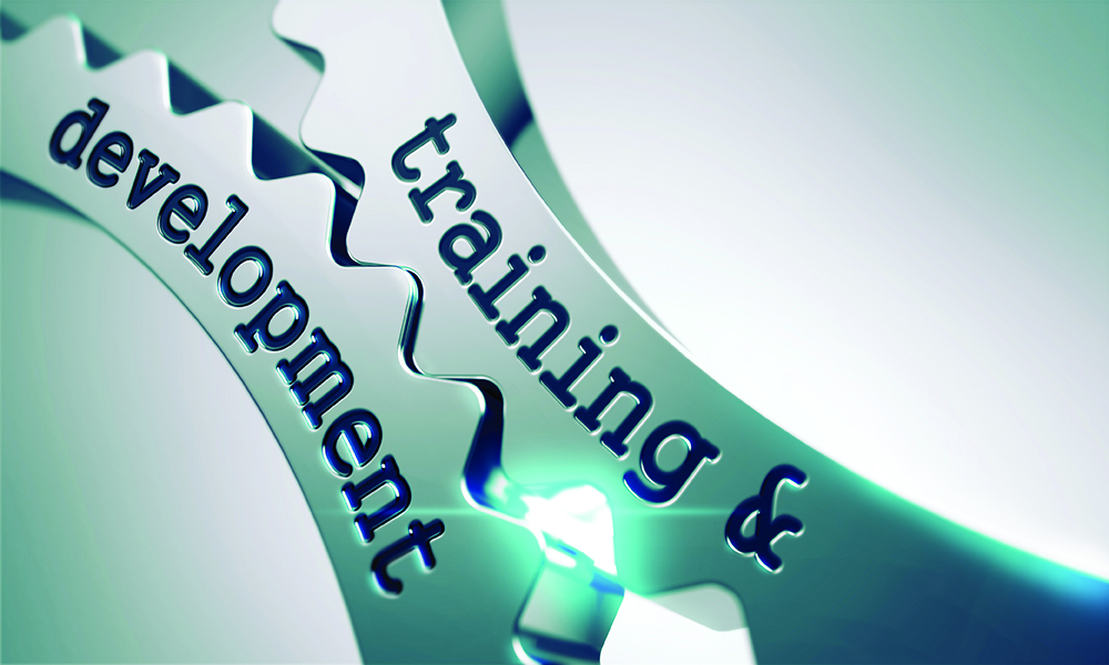 training and development